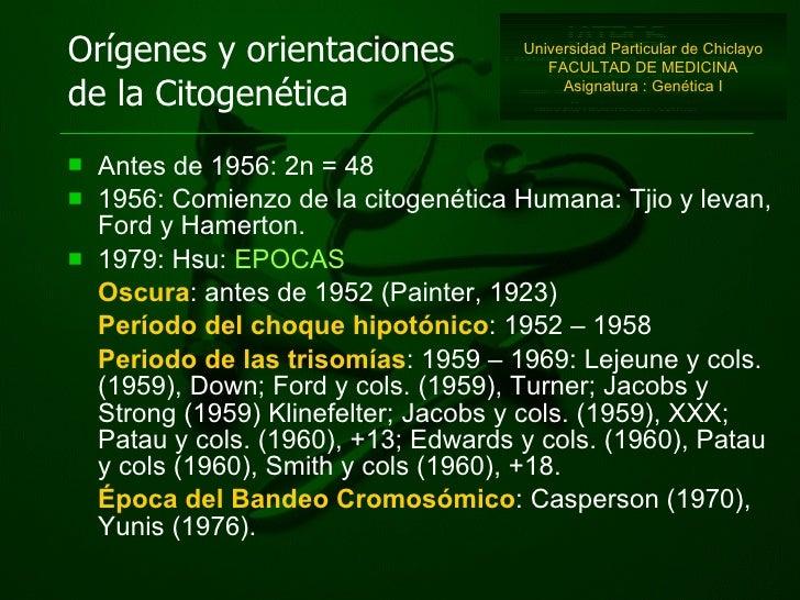 Orígenes y orientaciones de la Citogenética <ul><li>Antes de 1956: 2n = 48 </li></ul><ul><li>1956: Comienzo de la citogené...