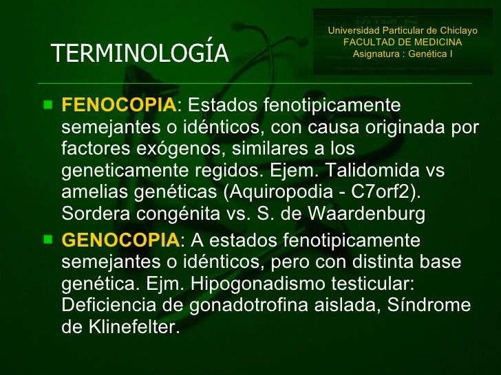<ul><li>FENOCOPIA : Estados fenotipicamente semejantes o idénticos, con causa originada por factores exógenos, similares a...