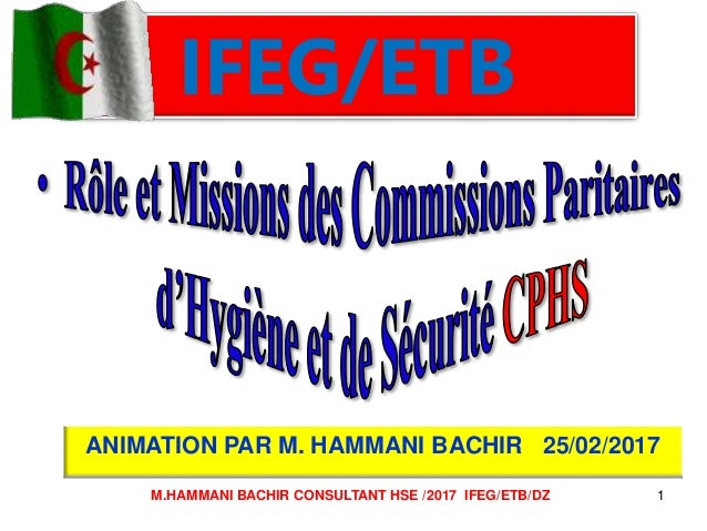 IFEG/ETB ANIMATION PAR M. HAMMANI BACHIR 25/02/2017 1M.HAMMANI BACHIR CONSULTANT HSE /2017 IFEG/ETB/DZ