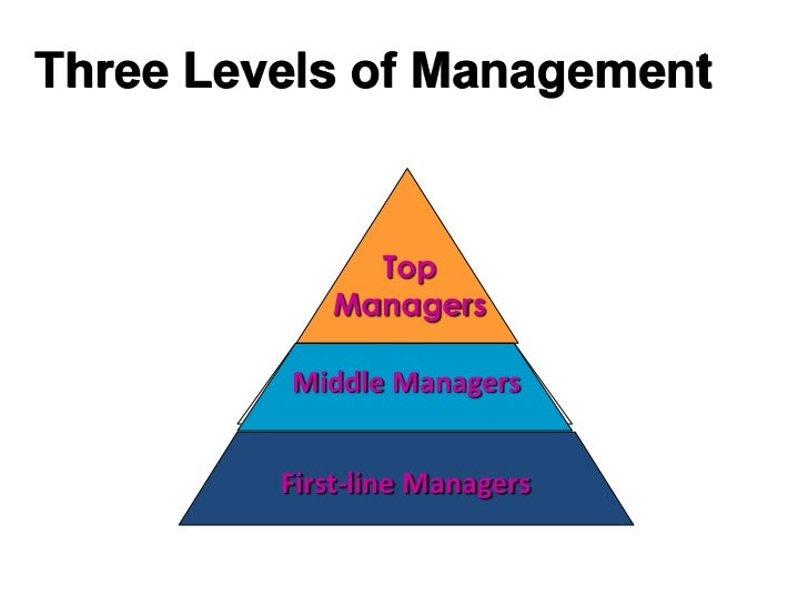 the role of organization in social The role of organizational social capital in performance management  forthcoming in public performance &management review michele tantardini.