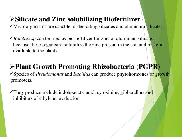 role of bio fertilizers in sustainable Importance of biofertilizers in sustainable crop production has been reviewed use of bio-fertilizers and organic inputs - as lisa technology by farmers of sangamner.