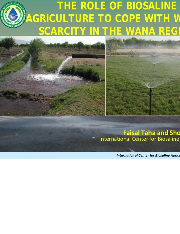 THE ROLE OF BIOSALINEAGRICULTURE TO COPE WITH WATER  SCARCITY IN THE WANA REGION                       FaisalTahaandSho...