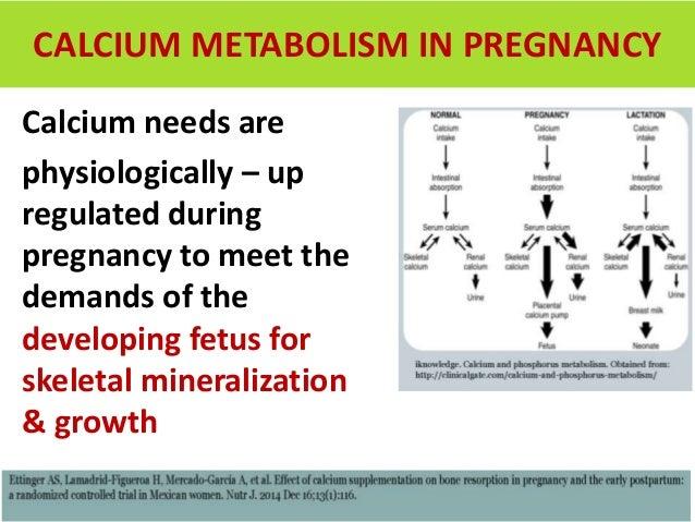 Role of Calcium in pregnancy DR. SHARDA JAIN Dr. Jyoti ...