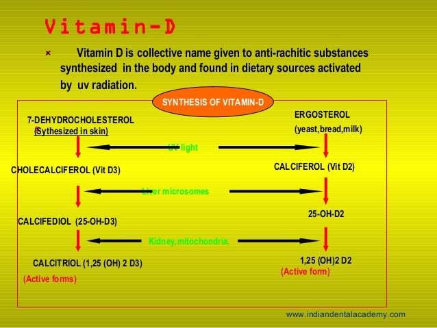 vitamin d sythesis Sunlight the most well-known source of vitamin d is via synthesis in the skin induced by sun exposure the first reference to the physiological effect of sunlight on vitamin d was illustrated by the greek historian herodotus.