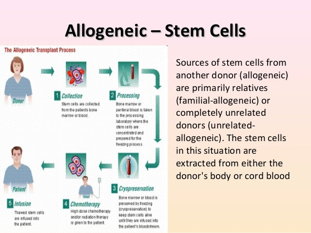 stem cell harvesting awareness Stem cell services neurotoxicity screening crispr/cas9 genome editing targatt™ genome editing bioproduction  to maintain an awareness of current developments in the literature.