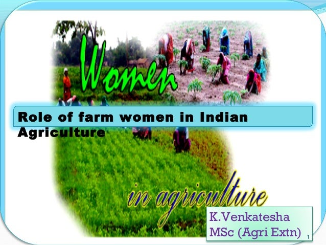 Role of farm women in Indian Agriculture K.Venkatesha MSc (Agri Extn) 1