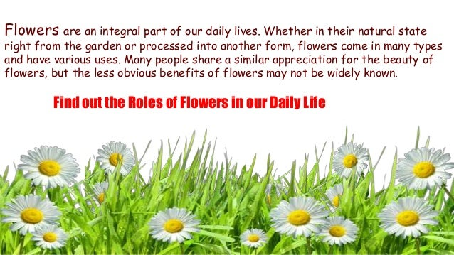 uses of flowers in our daily life