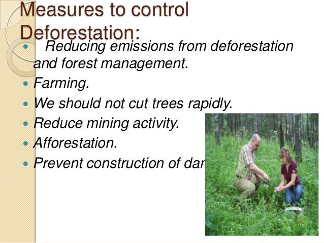 essay about preserving natural resources Conservation of natural resources essay the need for conservation of natural resources was felt by our predecessors and in india there was a tradition of respecting and preserving the nature and natural resources.