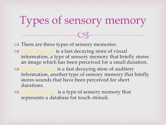 iconic and echoic memory essay Memory is an important cognitive process, which helps us to record the past so that we can refer to it later, as and when required 510 words essay on memory.