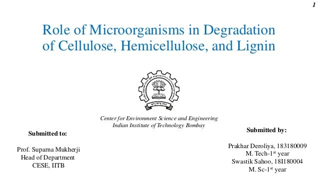 Role of Microorganisms in Degradation of Cellulose, Hemicellulose, and Lignin Submitted by: Prakhar Deroliya, 183180009 M....