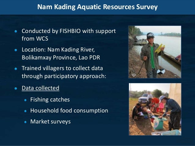 Nam Kading Aquatic Resources Survey Conducted by FISHBIO with support from WCS Location: Nam Kading River, Bolikamxay Prov...