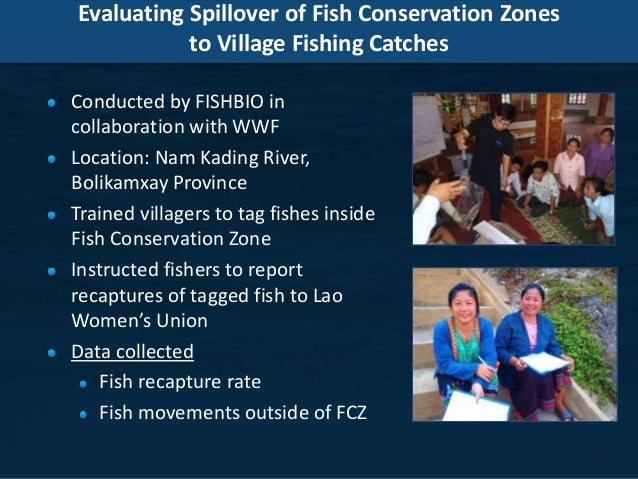 Evaluating Spillover of Fish Conservation Zones to Village Fishing Catches Conducted by FISHBIO in collaboration with WWF ...
