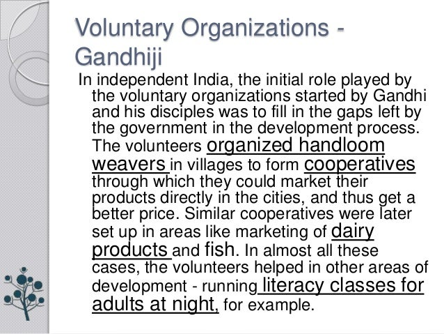 role of voluntary organizations & govt