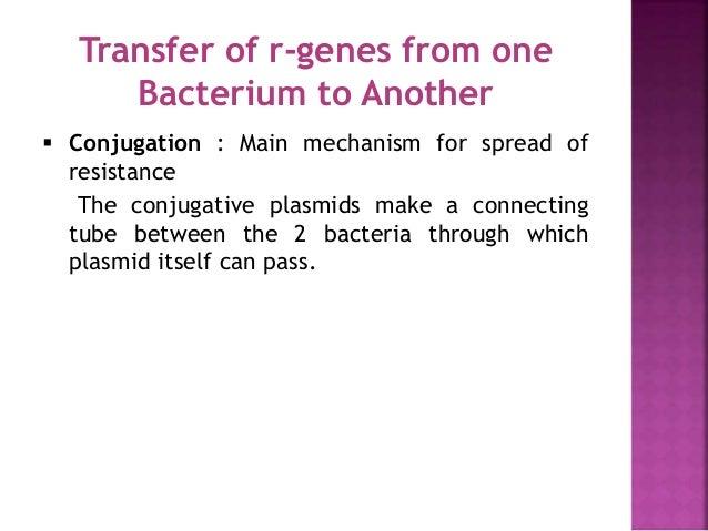 Decreased permeability: Porin Loss Interior of organism Cell wall Porin channel into organism Antibiotic Antibiotics norma...