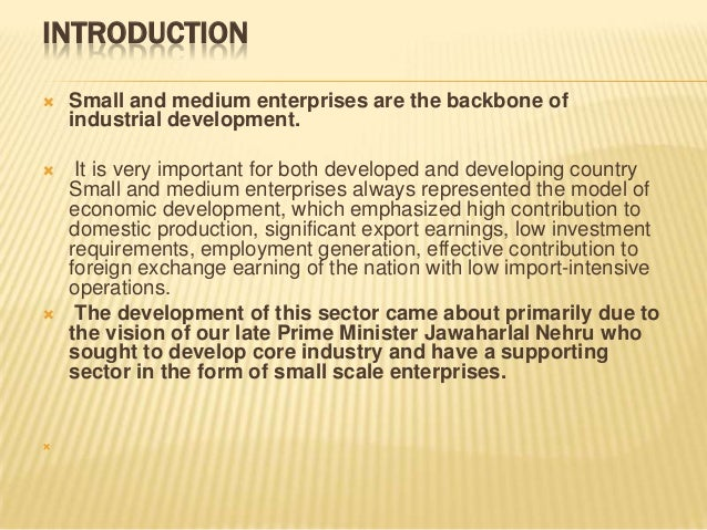 role of smes in national development The government's role in smes through its policies and legislation acts as both a barrier and a facilitator of the establishment and development of smes.