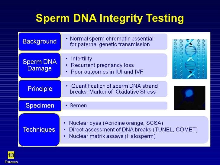 Sperm DNA Integrity Testing Esteves