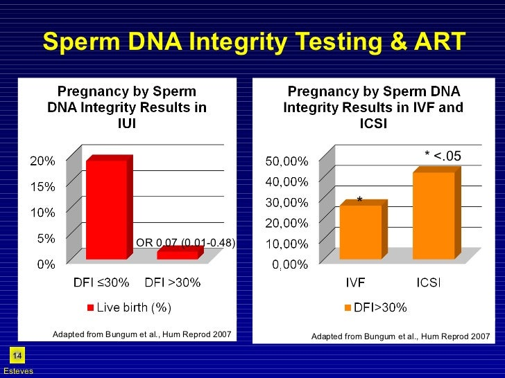 Sperm DNA Integrity Testing & ART OR 0.07 (0.01-0.48) Esteves Adapted from Bungum et al., Hum Reprod 2007 Adapted from Bun...