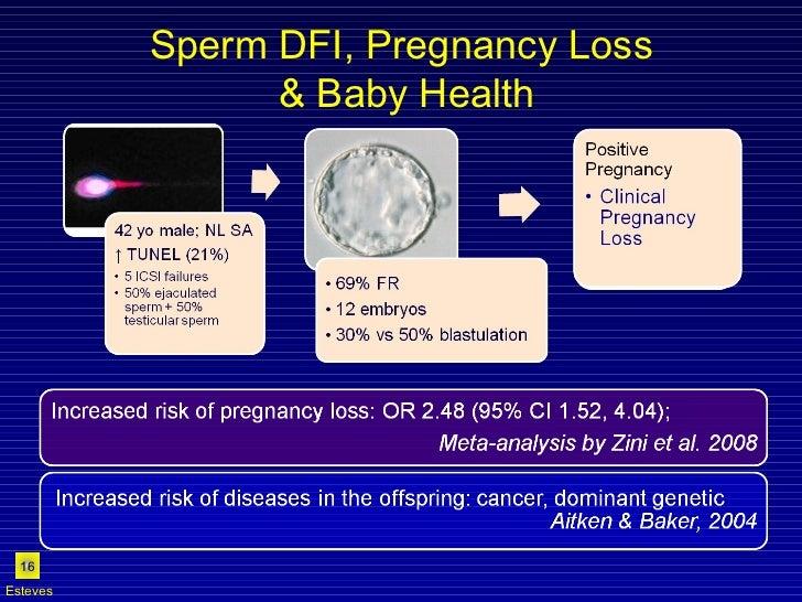 Sperm DFI, Pregnancy Loss  & Baby Health Esteves