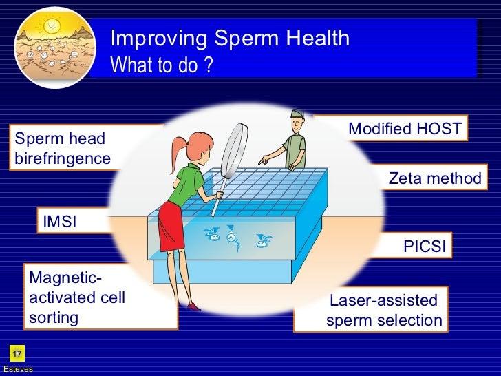 Zeta method Modified HOST IMSI PICSI Sperm head birefringence Laser-assisted  sperm selection Esteves Magnetic- activated ...