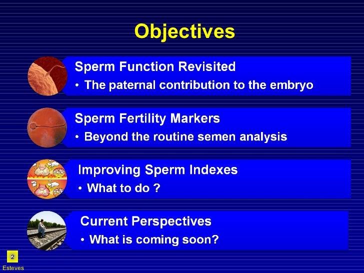 Objectives Esteves