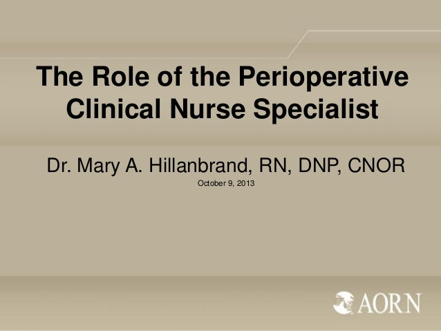 The Role of the Perioperative Clinical Nurse Specialist Dr. Mary A. Hillanbrand, RN, DNP, CNOR October 9, 2013