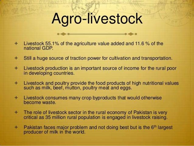 constraints in livestock sector in pakistan Valuechain analysis oflivestock sector(dairy) in districtvehari ,  value chain analysis of livestock sector  31 role of livestock in pakistan economy 14.