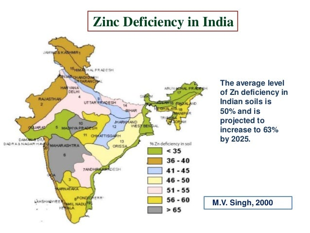Role of zinc in crop production for Soil zinc deficiency