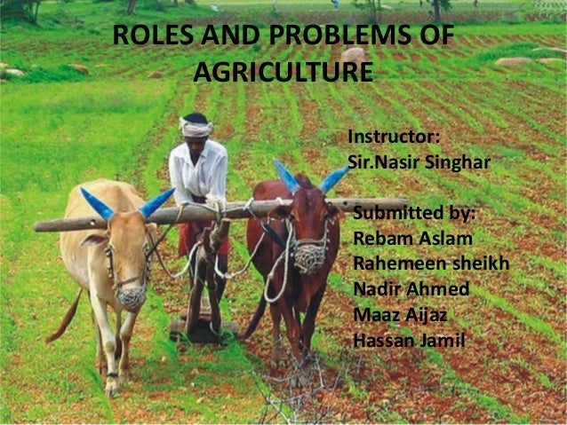 ROLES AND PROBLEMS OF AGRICULTURE Instructor: Sir.Nasir Singhar Submitted by: Rebam Aslam Rahemeen sheikh Nadir Ahmed Maaz...