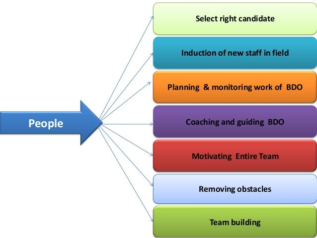 Roles and responsibilities of regional sales managers