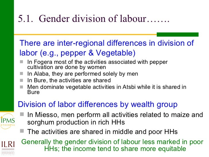 Gender & Society in the Classroom: Division of Household Labor