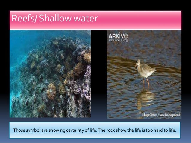 final water allegory Start studying hela 9 final exam symbolism and allegory + archetypes review learn vocabulary, terms, and more with flashcards, games, and other study tools.