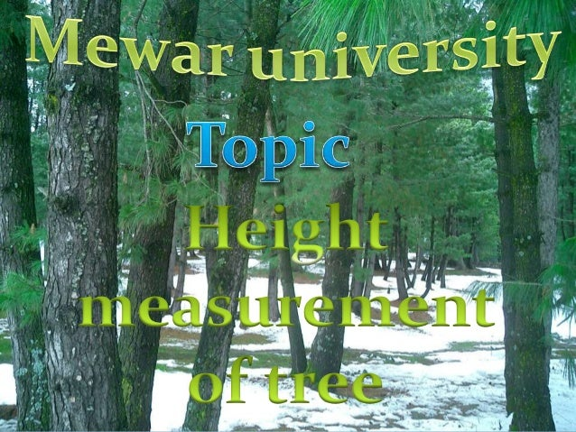 Height Measurement of Trees Definition Total height of the tree is the straight line distance from the tip of the leadin...
