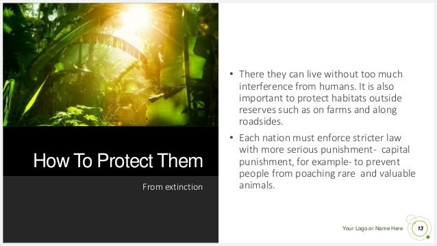 Your Logo or Name Here How To Protect Them From extinction 13 • There they can live without too much interference from hum...