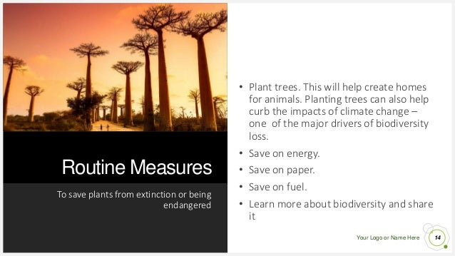 Your Logo or Name Here Routine Measures To save plants from extinction or being endangered 14 • Plant trees. This will hel...