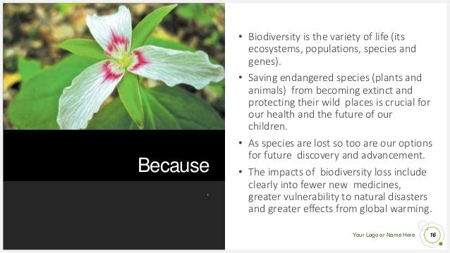 Your Logo or Name Here Because . 16 • Biodiversity is the variety of life (its ecosystems, populations, species and genes)...