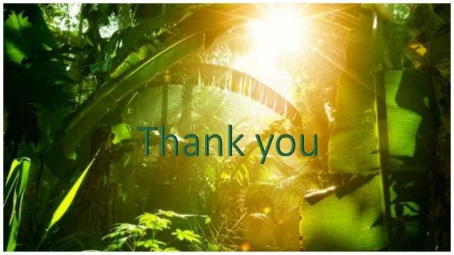 Thank You +1 23 987 6554 kalle@email.com www.fabrikam.com