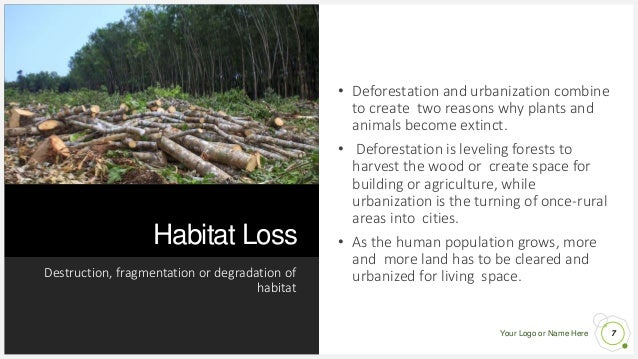 Your Logo or Name Here Habitat Loss Destruction, fragmentation or degradation of habitat 7 • Deforestation and urbanizatio...