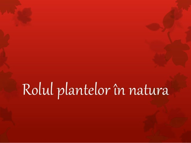 Rolul plantelor în natura