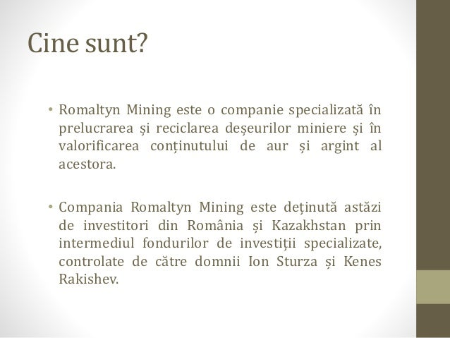 Romaltyn Mining - descriere companie Slide 3