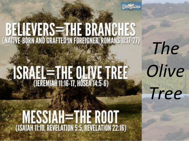 Image result for Israel vs Church images
