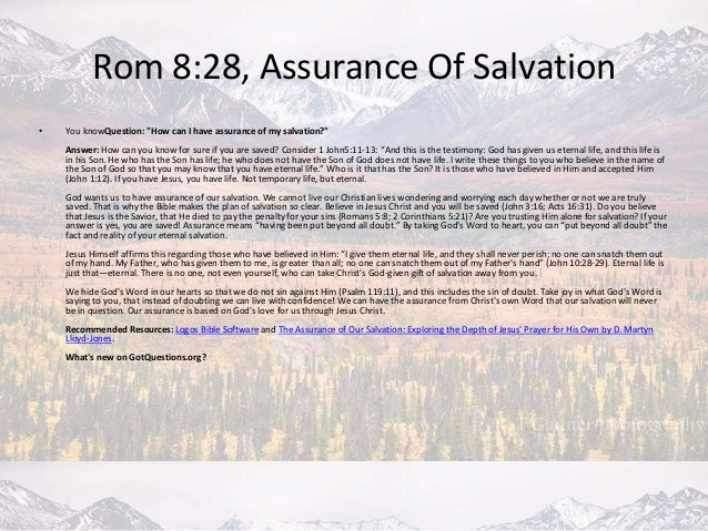 The Assurance of Our Salvation Studies in John 17 Exploring the Depth of Jesus Prayer for His Own