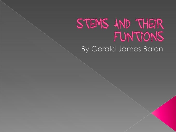  A stem is a collection of integrated  tissues arranged as nodes and  internodes. Nodes are regions where leaves attach ...