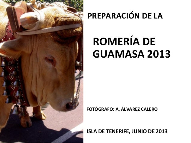 PREPARACIÓN DE LAROMERÍA DEGUAMASA 2013FOTÓGRAFO: A. ÁLVAREZ CALEROISLA DE TENERIFE, JUNIO DE 2013