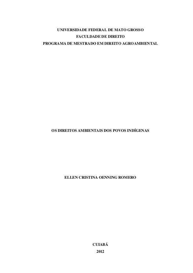UNIVERSIDADE FEDERAL DE MATO GROSSO FACULDADE DE DIREITO PROGRAMA DE MESTRADO EM DIREITO AGROAMBIENTAL OS DIREITOS AMBIENT...
