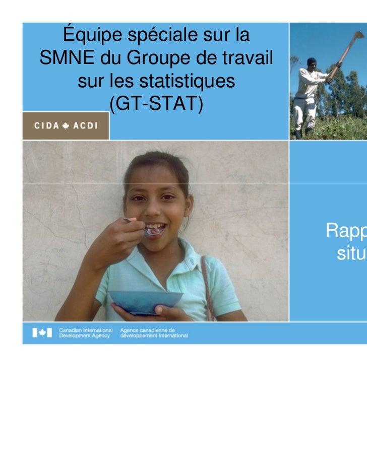 Équipe spéciale sur laSMNE du Groupe de travail   sur les statistiques       (GT-STAT)                            Rapport ...