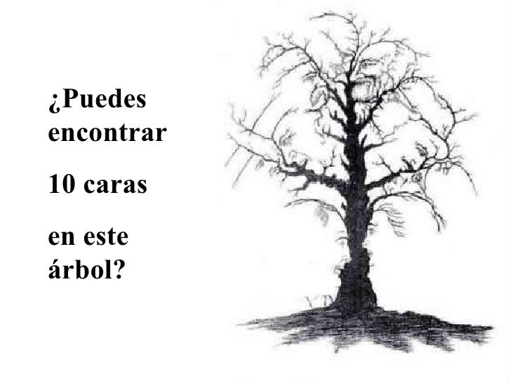 ¿Puedes encontrar 10 caras  en este árbol?