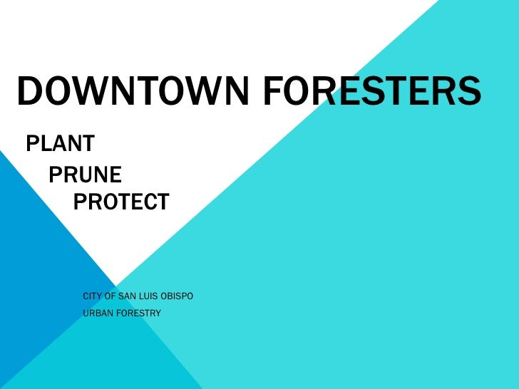 DOWNTOWN   FORESTERS   PLANT   PRUNE    PROTECT CITY OF SAN LUIS OBISPO URBAN FORESTRY