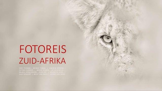 FOTOREIS ZUID-AFRIKA EDDY THOMAS – JEANINE THIBAU | CHANTAL STEVENS – PATRICK CORNELIS | WENDY REMON – LUT DE MAEYER | MAR...