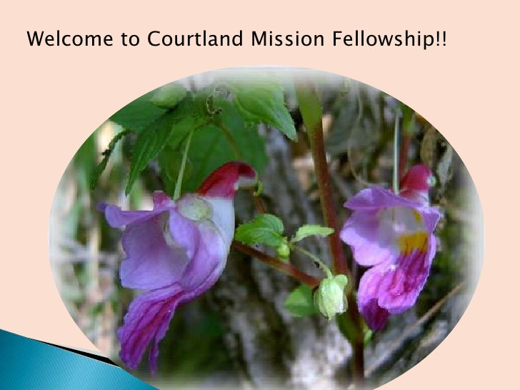 Welcome to Courtland Mission Fellowship!!<br />