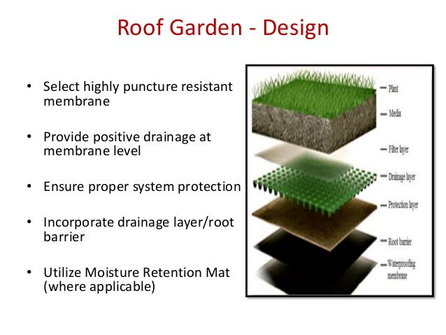 Roof Garden   Design ... Part 64